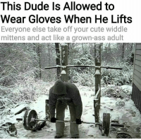 Af, Ass, and Cute: This Dude ls Allowed to  Wear Gloves When He Lifts  Everyone else take off your cute widdle  mittens and act like a grown-ass adult Savage AF