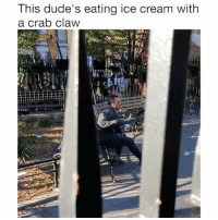 Ice Cream, Girl Memes, and Another: This dude's eating ice cream with  a crab claw This guy is taking @halotopcreamery to another level 🤣