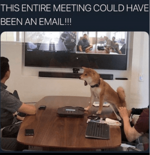 It's every damn work day with this sh*t. #Meeting #Shiba #DogMemes #Work #Memes: THIS ENTIRE MEETING COULD HAVE  BEEN AN EMAIL!!! It's every damn work day with this sh*t. #Meeting #Shiba #DogMemes #Work #Memes