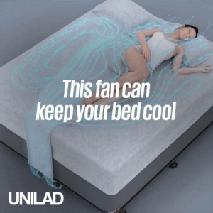 Dank, Summer, and Best: This fancan  keep yourbed cool  UNILAD This fan will give you the best summer sleeps ever 💨🙌