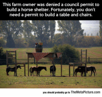 Tumblr, Blog, and Horse: This farm owner was denied a council permit to  build a horse shelter. Fortunately, you don't  need a permit to build a table and chairs  you should probably go to TheMetaPicture.com srsfunny:  That Is One Clever Farmer