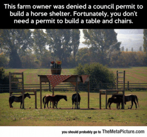 Tumblr, Blog, and Horse: This farm owner was denied a council permit to  build a horse shelter. Fortunately, you don't  need a permit to build a table and chairs  you should probably go to TheMetaPicture.com srsfunny:That Is One Clever Farmer
