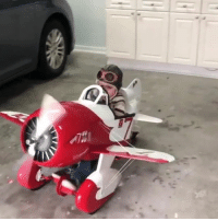 Airplane, Play, and Own: This father spent months building his son his own propellor airplane to play in 😍👏   ViralHog