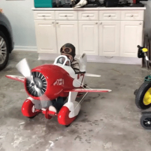 This father spent months building his son his own propellor airplane to play in 😍👏   ViralHog: This father spent months building his son his own propellor airplane to play in 😍👏   ViralHog