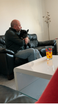 Another, Dog, and Who: This father who absolutely, positively did not want another dog.
