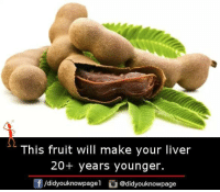 Memes, 🤖, and Liver: This fruit will make your liver  20+ years younger.  /didyouknowpagel @didyouknowpage