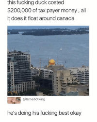 Bailey Jay, Fucking, and Memes: this  fucking  duck  costed  $200,000 of tax payer money , all  it does it float around canada  @lamedotking  he's doing his fucking best okay Give him a break