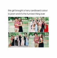 Memes, Girl, and 🤖: this girl brought a harry cardboard cutout  to prom and it's the funniest thing ever  ig: @styles flaws have you went to prom yet - [ follow @stylesflaws (me) for more posts! 🤝 ]