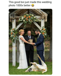 Memes, Good, and Wedding: This good boi just made this wedding  photo 1000x better Fact.