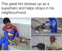 positive-memes:  Great kid, he's doing a really great thing for his community.: This great kid dresses up asa  superhero and helps strays in his  neighbourhood. positive-memes:  Great kid, he's doing a really great thing for his community.