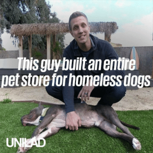 Dank, Dogs, and Homeless: This guy built an entire  pet store for homeless dogs  UNKAD This guy just built an entire pet store for a homeless pit bull so he could pick out any toy he wanted ❤️️🙌  Rocky Kanaka