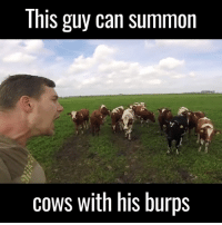 This guy f*cking loves burping at cows 😂🐮 (tap for 🔊): This guy can summon  cows with his burps This guy f*cking loves burping at cows 😂🐮 (tap for 🔊)