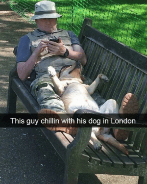 Dank, London, and 🤖: This guy chillin with his dog in London