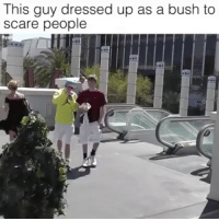 Af, Friends, and Memes: This guy dressed up as a bush to  scare people Dead AF 😂😂😂😂 🗣GOLIKE 👉 @weaponstagram - - 🚹 TAG your friends 📡 Check My IG Stories👈 - - - ArmyStrong Sailor Marine Veterans Military Brotherhood Marines Navy AirForce Neverforget UnitedStates USArmy Soldier NavySEALs airborne socialmedia - operator troops tactical Navylife USMC Veteran -