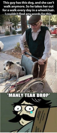 The feels..: This guy has this dog, and she can't  walk anymore. So he takes her out  for a walk every day in a wheelchair.  I couldn't find any words for this.  MANLY TEAR DROP The feels..