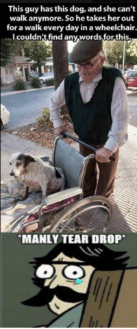 manly tears: This guy has this dog, and she can't  walk anymore. So he takes her out  for a walk every day in a wheelchair  I couldn't find any words for this.  MANLY TEAR DROP