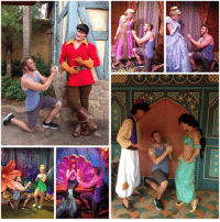 Disney, Disney World, and World: This guy proposed to various characters at Disney World