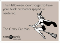 Crazy, Halloween, and Memes: This Halloween, don't forget to have  your black cat haters spayed or  neutered  The Crazy Cat Man  cards  SOm  ee  user card