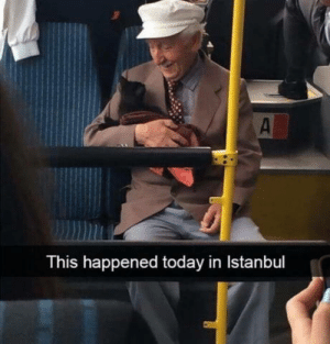 Is this what love is like?: This happened today in Istanbul Is this what love is like?