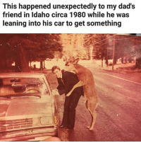 Memes, Mean, and 🤖: This happened unexpectedly to my dad's  friend in Idaho circa 1980 while he was  leaning into his car to get something I mean that is seriously one unexpected turn of events. | Follow @aranjevi for more!