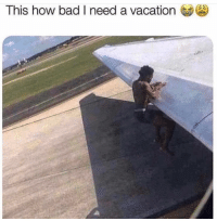 Bad, Funny, and Vacation: This how bad I need a vacation Need it ASAP