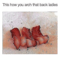 Funny, Instagram, and Lmao: This how you arch that back ladies lmao petty nofucksgiven lol funny funnymemes nochill igers funnyshit hilarious tbh laugh instagood instadaily instagram instalike instamood instacool meme memes 😂 instafunny