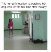 This gives my heart so much joy | Follow @cuteandfuzzybunch 👈 for them fuzzy memes!: This human's reaction to watching her  dog walk for the first time after therapy This gives my heart so much joy | Follow @cuteandfuzzybunch 👈 for them fuzzy memes!