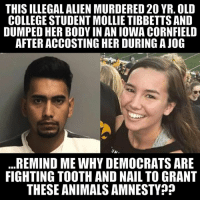 Animals, College, and Life: THIS ILLEGAL ALIEN MURDERED 20 YR. OLD  COLLEGE STUDENT MOLLIE TIBBETTS AND  DUMPED HER BODY IN AN IOWA CORNFIELD  AFTER ACCOSTING HER DURING A JOG  REMIND ME WHY DEMOCRATS ARE  FIGHTING TOOTH AND NAIL TO GRANT  THESE ANIMALS AMNESTY ? ‪The ruthless murder of 20 yr old Mollie Tibbetts by an illegal alien is INFURIATING!‬  ‪The blood of this innocent girl with her whole life ahead of her is on the hands of radicalized Democrats all across this country!‬ #ExposeTheLeft #RadicalizedDemocrats‬ #WalkAway‬ ‪#MollieTibbetts‬