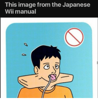 Memes, Image, and Japanese: This image from the Japanese  Wii manual