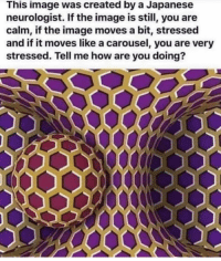 Memes, Home, and Image: This image was created by a Japanese  neurologist. If the image is still, you are  calm, if the image moves a bit, stressed  and if it moves like a carousel, you are very  stressed. Tell me how are you doing?  OOO0 So how are you feeling??? Is everything okay at home??🤔 krakstv