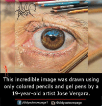 Memes, Image, and Old: This incredible image was drawn using  only colored pencils and gel pens by a  19-year-old artist Jose Vergara.  Cf /didyouknowpagel Cu  @didyouknowpage