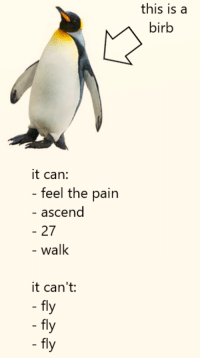 Pain, Can, and Fly: this is a  birb  it can:  feel the pain  - ascend  27  walk  it can't:  fly  fly  fly