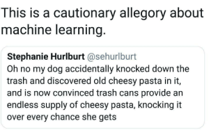 Machine Learning in a nutshell: This is a cautionary allegory about  machine learning.  Stephanie Hurlburt @sehurlburt  Oh no my dog accidentally knocked down the  trash and discovered old cheesy pasta in it,  and is now convinced trash cans provide an  endless supply of cheesy pasta, knocking it  over every chance she gets Machine Learning in a nutshell