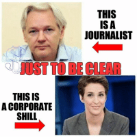 shill: THIS IS  A CORPORATE  SHILL  THIS  ISA  JOURNALIST