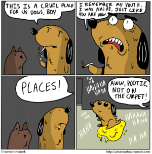 the-memebase:  dog eat dog: THIS IS A CRUEL PLACE I REMEMBER my YOUTH.  FOR US DOGS, BOY.  I WAS NAIVE, JUST LIKE  YOU ARE NOW.  %3   PLACES!  HA  HÀ  ЦАНА НА  НА НА NОT O N  JAHA HA Aww, POOTIE,  THE CARPET!  НА  НА  НАНАНА  НАНА  HAHA  stewart matzek  НА НА  http://amateurhourcomics.com the-memebase:  dog eat dog