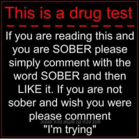 """drug testing: This is a drug test  If you are reading this and  you are SOBER please  simply comment with the  word SOBER and then  LIKE it. If you are not  sober and wish you were  please comment  """"I'm trying"""