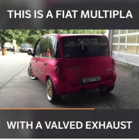 Memes, Boost, and Fiat: THIS IS A FIAT MULTIPLA  THE  NTAINSTREAM  OD TY 93  WITH A VALVED EXHAUST What am I seeing and hearing?! 😂 📷:Tarek Younes . . @carthrottlevideo carmemes jdm turbo boost tuner carsofinstagram carswithoutlimits carporn instacars supercar carspotting supercarspotting stance stancenation stancedaily racecar cargram carthrottle drift