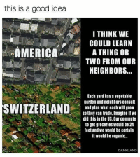 America, Food, and Memes: this is a good idea  I THINK WE  COULD LEARN  AMERICAA THING OR  TWO FROM OUR  NEIGHBORS...  Each yard has a vegetable  garden and neighbors consult  and plan what each will grow  so they can trade. Imagine if we  did this in the US. Our commute  to get groceries would be 24  feet and we would be certain  it would be organic..  DANKLAND If every home in America grew a garden, high food prices would collapse within one month. LittleKnownFact