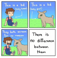"Memes, Scream, and Goat: This is a kid This is a kid  (balby human baby goat)  They both scream  There is  no difference  between  them  or no reason <p>We are one via /r/memes <a href=""http://ift.tt/2C4dAhu"">http://ift.tt/2C4dAhu</a></p>"