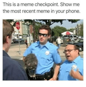 Meme, Phone, and Got: This is a meme checkpoint. Show me  the most recent meme in your phone. Show me whatcha got