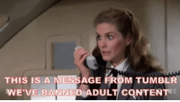 Tumblr, Content, and Adult: THIS IS A MESSAGE FROM TUMBLR  WE'VE BANNED ADULT CONTENT Mientras tanto, en Tumblr…
