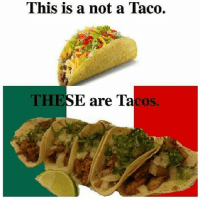 You have not eaten a real taco until you've tried the authentic stuff. Authentic tacos and the tacos from Taco Bell are completely different.: This is a not a Taco.  THES  E are Ta  coS. You have not eaten a real taco until you've tried the authentic stuff. Authentic tacos and the tacos from Taco Bell are completely different.
