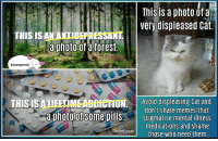 A revolution that fails to be intersectional is a regime change, not a revolution.: This is a photo ofa  very displeased Cat.  THIS IS AN ANTIDEPRESSA  a photo of a forest.  THISISALLEE IMEABBitTION Avoid displeasing Cat and  don't share memes that  a photoTof Some pills.  stigmatise mental illness  medications and shame  The Free  Thought  those who need them A revolution that fails to be intersectional is a regime change, not a revolution.