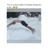 Memes, Videos, and Snow: This is a short video of People diving into  Snow follow @comediic for more videos ✨✨