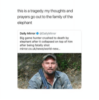 Family, News, and School: this is a tragedy. my thoughts and  prayers go out to the family of the  elephant  Daily Mirror @DailyMirror  Big game hunter crushed to death by  elephant after it collapsed on top of him  after being fatally shot  mirror.co.uk/news/world-new... School starts tomorrow, time to neck myself