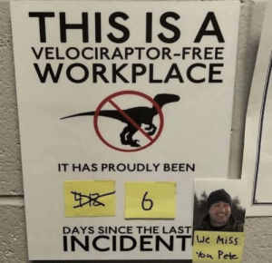Free: THIS IS A  VELOCIRAPTOR-FREE  WORKPLACE  IT HAS PROUDLY BEEN  DAYS SINCE THE LAST  INCIDENTe Miss  loa Pete