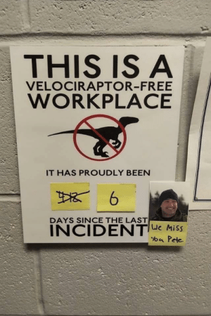 Rest in pete: THIS IS A  VELOCIRAPTOR-FREE  WORKPLACE  IT HAS PROUDLY BEEN  DAYS SINCE THE LAST  INCIDENTe Miss  a Pete Rest in pete