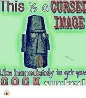 Dank, Memes, and Reddit: This is aCURSE  IMAGE  Like immediately to get you-  COCK snnrked Squidward's House 🅱️e Watching by dankbob_memepants_ FOLLOW 4 MORE MEMES.
