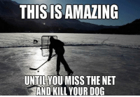 Dog: THIS IS AMAZING  UNTILYOUMISS THE NET  AND KILL YOUR DOG