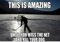 -Vinayy: THIS IS AMAZING  UNTILYOUMISS THE NET  AND KILL YOUR DOG -Vinayy